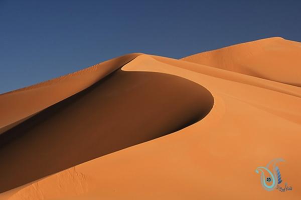 از کویر مصر چه می دانید؟