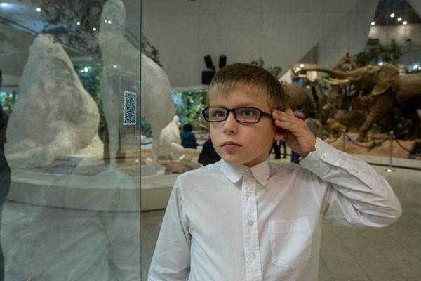نمایشگاه عکس خزندگان، عنکبوتها و حشرات از 13 اوت در موزه داروین